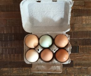 Half Dozen Farmers Market Eggs