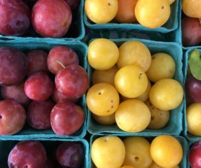 farmers market plums