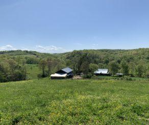 Long Hungry Creek Farm