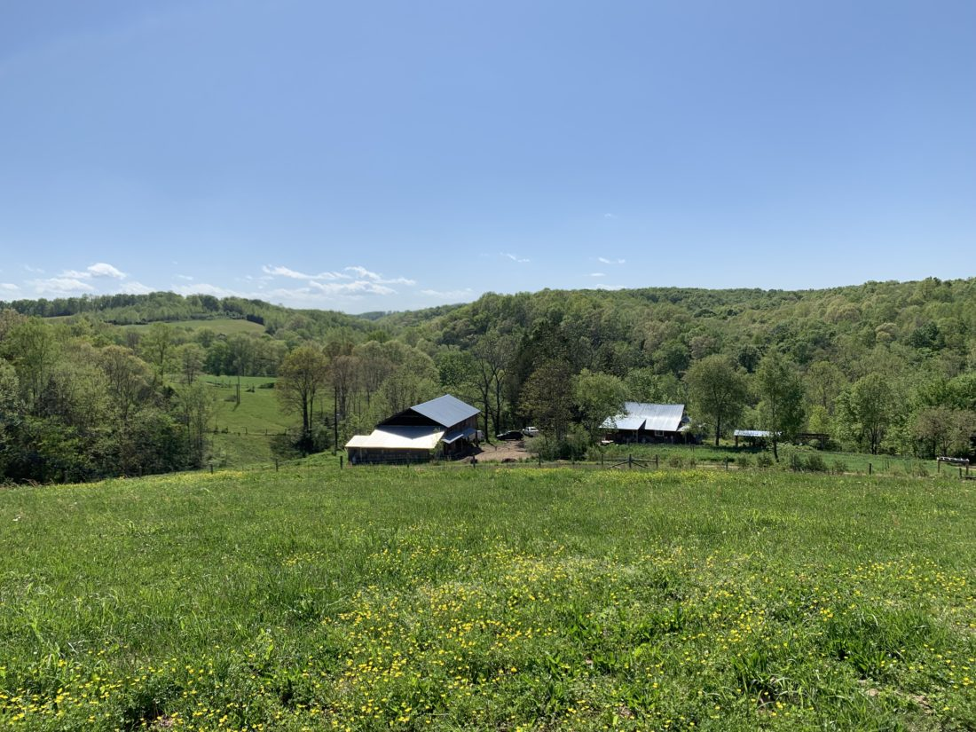 Long Hungry Creek Farm