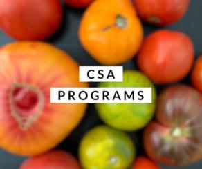 CSA Category
