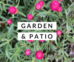 garden and patio category photo