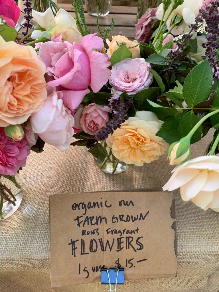 12 South Market Flowers